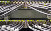 Switch ports — Stock Photo