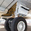 Stock Photo: Front landing gear light aircraft