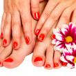 Stock Photo: Pedicure feet of young woman