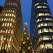 Stock Photo: Christmas tree and skyscrapers