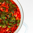 Casserole with fresh hot borsch — Stock Photo