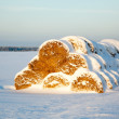 Haystack under snow at sunset — Stock Photo #25015877