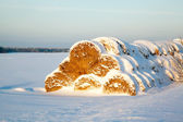 Haystack under snow at sunset — Stock fotografie