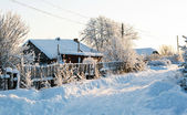Winter rural road and trees in snow — Stock Photo