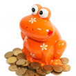 Piggy frog and golden coins isolated — Stock Photo