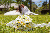 Wedding bouquet of frangipani — Stock Photo