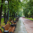 Benches under rain — Stock Photo