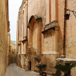 Maltese narrow street Mdina, Malta — Stock Photo #44376877