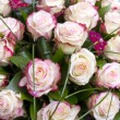 Bouquet of Roses — Stockfoto #19183565