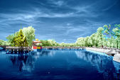 Infrared photo of park with reflection — Stock Photo