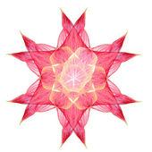 Pink flower mandala — Stock Photo