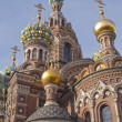 Detail of Church of the Saviour on Spilled Blood, St. Petersburg, Russia — Stock Photo