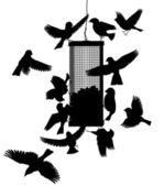 Bird feeder — Stock Vector