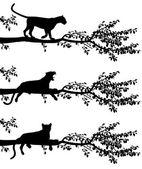 树豹 — 图库矢量图片