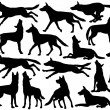 Wolf silhouettes — Stock Vector #40115733