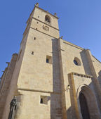 Caceres Cathedral — Stockfoto