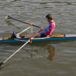 Stock Photo: Rowing