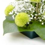 Floral arrangement — Stock Photo #43759471
