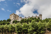 Castle Penafiel — Stock Photo