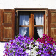 Stock Photo: Rustic Window