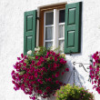 Rustic Window — Stock Photo #16192163