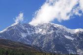 Monte ortler — Foto de Stock