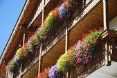 Balcony With Flowers — Stock Photo