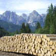 Firewood in the Dolomites — Stock Photo