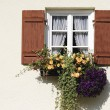 Rustic Window — Stock Photo #18941553