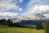 Alpine Meadow — Stock Photo