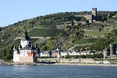 Pfalzgrafenstein Castle — Stock Photo