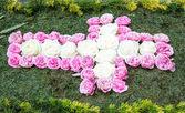 Kwiat krzyż — Zdjęcie stockowe