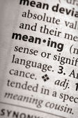 Dictionary Series - Philosophy: meaning — Stockfoto