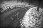 Snowy winter road — Stockfoto