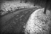 Snowy winter road — Stock Photo