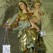 Our Lady of Mount Carmel — Stockfoto