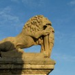 The Lion of Mdina — Stock Photo #26149287