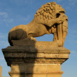 The Lion of Mdina — Stock Photo #26149293
