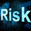 Business concept: pixelated words Risk on digital screen - Foto Stock