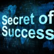 Stock Photo: Life style concept: pixelated words Secret of Success on digital