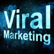 Stock Photo: Marketing concept: pixelated words Viral Marketing on digital sc