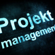 Management concept: pixelated words Projekt management on digita — ストック写真