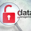 Icon padlock and words data management — Stock Photo