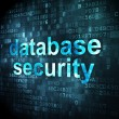 Постер, плакат: Security concept: database security on digital background
