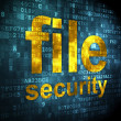 Stock Photo: Security concept: file security on digital background