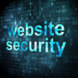 Security concept: website security on digital background — Stock Photo #17461131