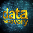 Information concept: data recovery on digital background - ストック写真