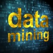 Information concept: data mining on digital background — Stockfoto
