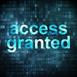 Stock Photo: Information concept: access granted on digital background