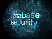 Security concept: database security on digital background — Stock Photo